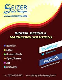 SeizerStyle Designs Summer 2013 poster